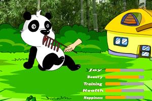 《喂养宠物熊猫》游戏画面1