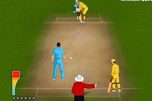 《2011世界板球》游戏画面1