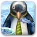 照顾小企鹅