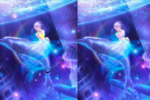 《梦幻海豚找不同》截图1