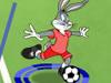 足球小将兔八哥