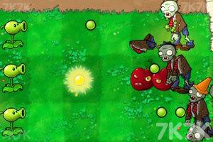 《植物大战僵尸无敌版》游戏画面4