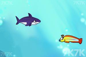 《饥饿的鲨鱼》游戏画面9
