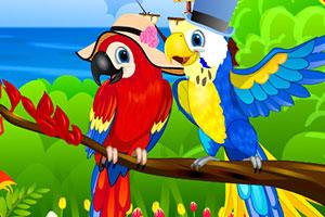 《五颜六色的鹦鹉》游戏画面1