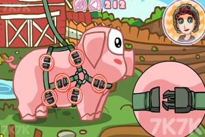 《照顾宠物猪》游戏画面1
