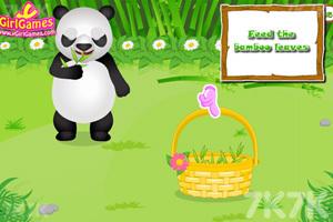 《照顾熊猫宝贝》游戏画面3