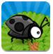 飞扬的瓢虫