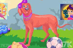 《哪只萌犬属于你》游戏画面3