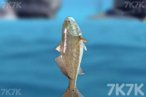 《海边钓鱼2》游戏画面3
