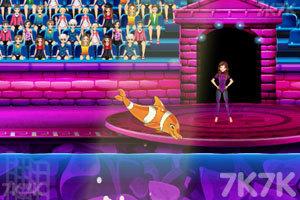 《魅力海豚展6》游戏画面4