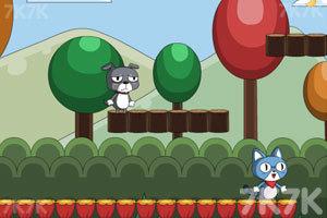 《欢喜冤家猫与狗》游戏画面3