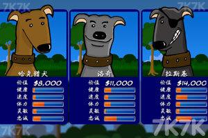 《训练狗狗参加比赛中文版》游戏画面3