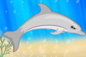《海豚装饰》游戏画面1