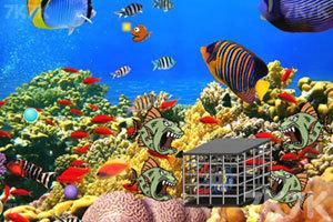 《海底营救热带鱼》游戏画面1