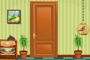 《鹦鹉逃离房子》游戏画面1