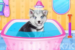 《小狗温泉沙龙》游戏画面4