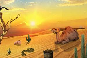 《你能逃出沙漠吗》游戏画面1