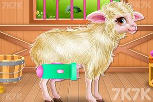 《照顾小羊宝宝》游戏画面1