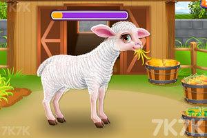 《照顾小羊宝宝》游戏画面4