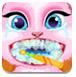 小猫治疗牙齿