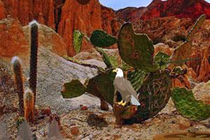 《逃离奇妙沙漠》游戏画面1