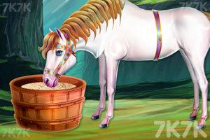 《清洗我的小马车》游戏画面4