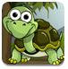 救援可爱的小乌龟