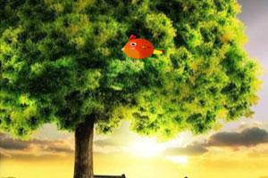 《打小鸟》游戏画面1