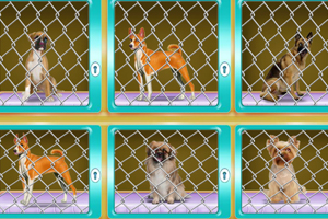 《狗笼逃生》游戏画面2