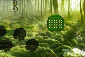 《绿森林蜥蜴逃脱》游戏画面1