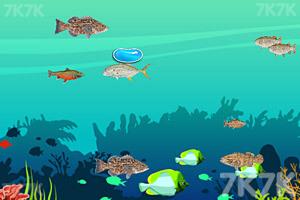 《大鱼吃小鱼2020》游戏画面2