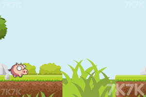 《小飞猪快跑》游戏画面2