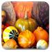 感恩节大餐找字母