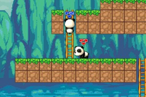 小熊猫大冒险