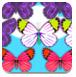 蝴蝶消失了