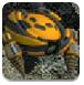 钻地机器人2中文版