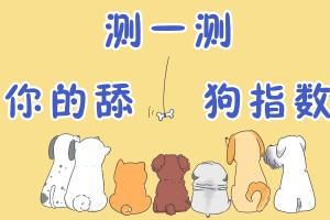 >测一测你的舔狗指数