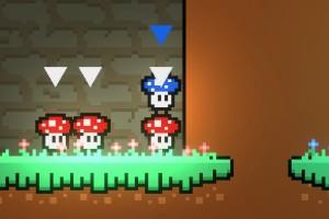团结的蘑菇